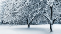 10_winter_landscapes_03