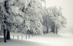 10_winter_landscapes_07