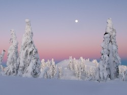 10_winter_landscapes_09