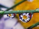 sparkling-drops_1024x768