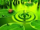 vivid-green_1024x768
