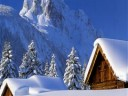 winter-240x320