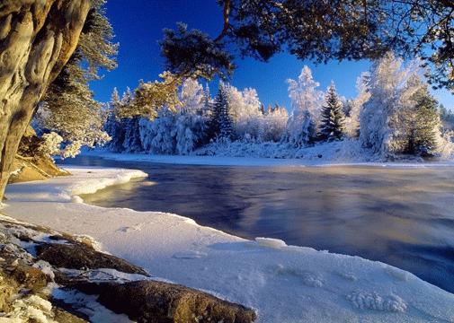 1600x1200-Winter-in-Heaven-wallpaper
