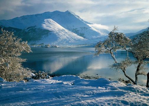 Beauty_Winter_Scene