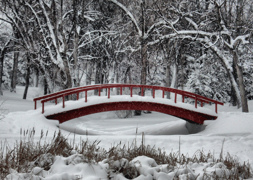 Winter_Wonderland_by_midnightstouch-wallpaper